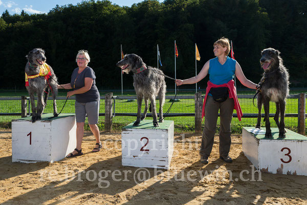 Deerhound Kleindoetingen 2017